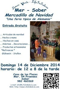 2014-feria-de-navidad-small