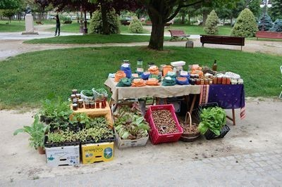 Fruits veggies galore