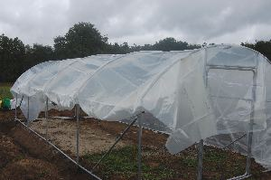 poly tunnel in the rain