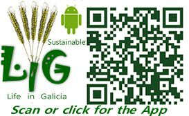Our App on Google play