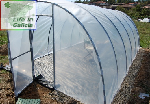 The green house project